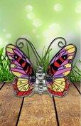 Vlinder in rood, paars, geel en zwart.
