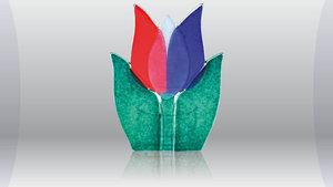 Tulp waxine licht rood/wit/blauw