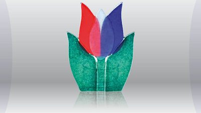 Tulp rood/wit/blauw